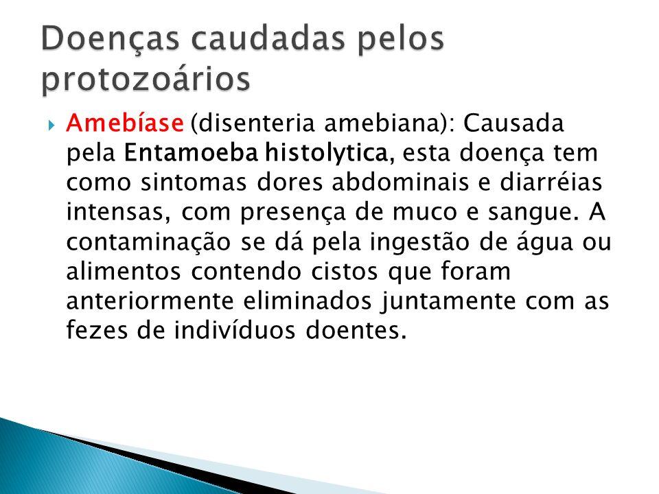 Amebíase (disenteria amebiana): Causada pela Entamoeba histolytica, esta doença tem como sintomas dores abdominais e diarréias intensas, com presença