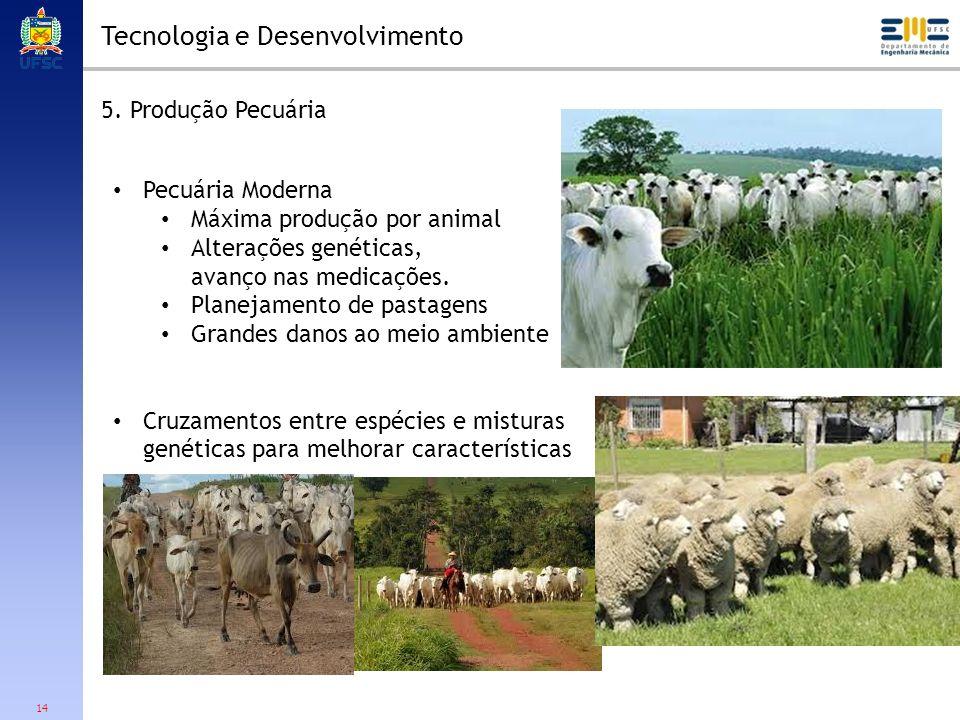 14 Tecnologia e Desenvolvimento 5. Produção Pecuária Pecuária Moderna Máxima produção por animal Alterações genéticas, avanço nas medicações. Planejam