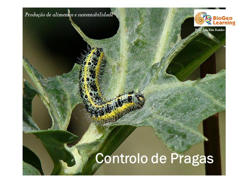 Produção de alimentos e sustentabilidade Controlo de Pragas Prof. Ana Rita Rainho
