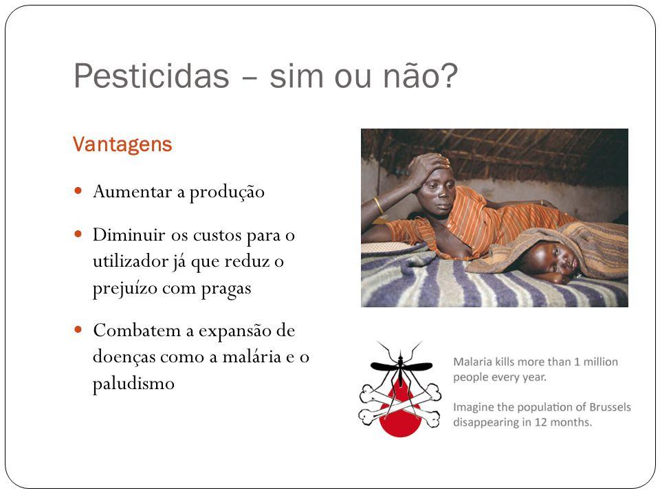 Pesticidas – sim ou não? Vantagens Aumentar a produção Diminuir os custos para o utilizador já que reduz o prejuízo com pragas Combatem a expansão de
