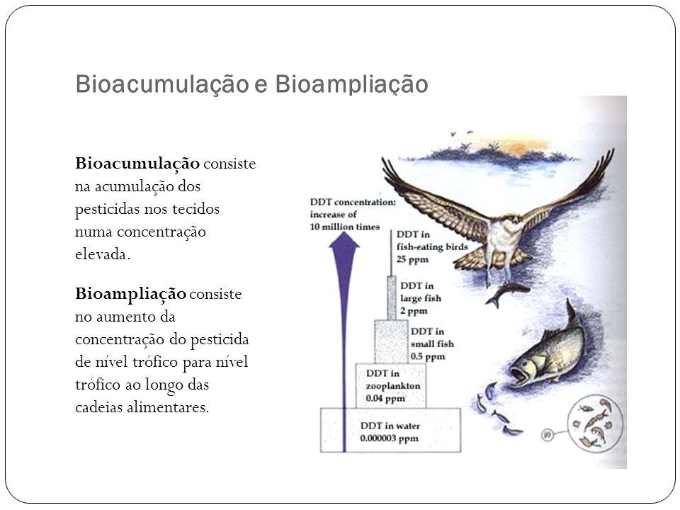 Bioacumulação e Bioampliação Bioacumulação consiste na acumulação dos pesticidas nos tecidos numa concentração elevada. Bioampliação consiste no aumen