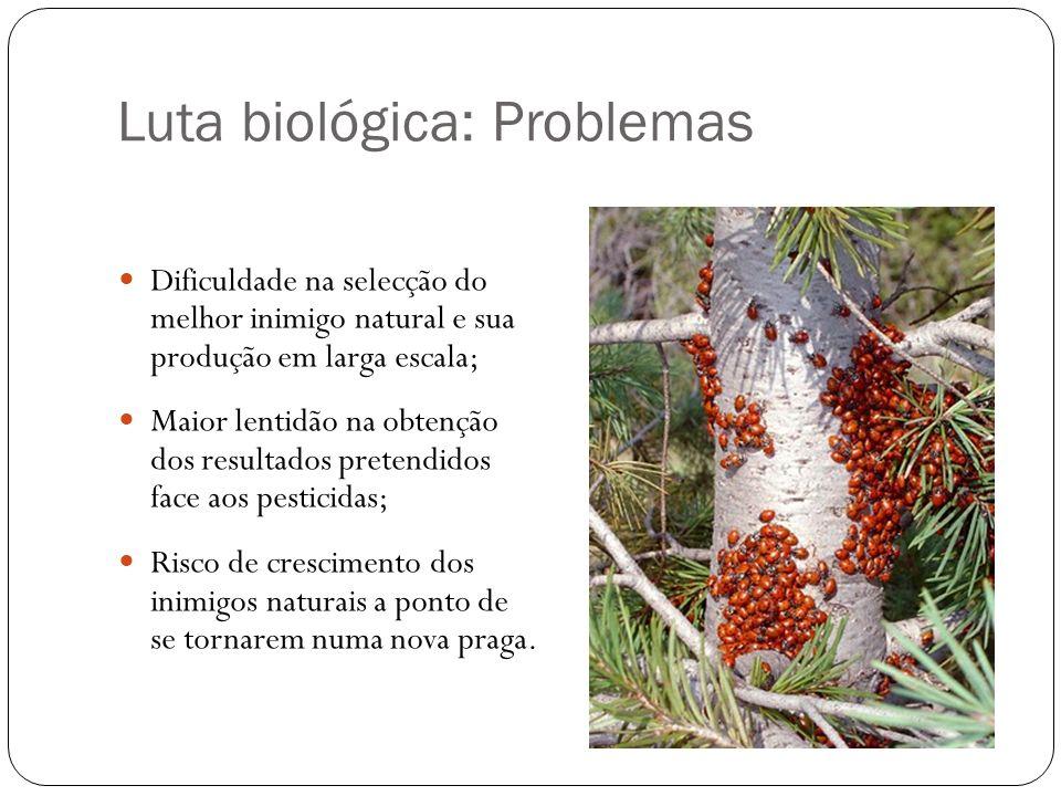 Luta biológica: Problemas Dificuldade na selecção do melhor inimigo natural e sua produção em larga escala; Maior lentidão na obtenção dos resultados