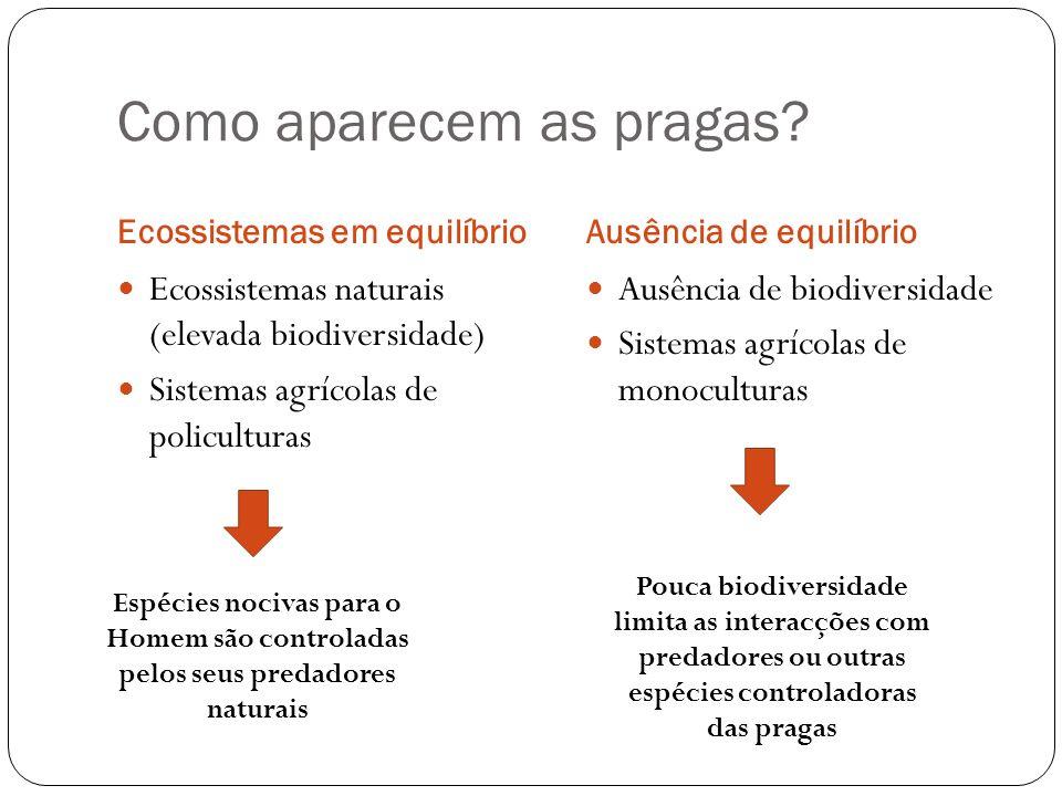 Como aparecem as pragas? Ecossistemas em equilíbrioAusência de equilíbrio Ecossistemas naturais (elevada biodiversidade) Sistemas agrícolas de policul