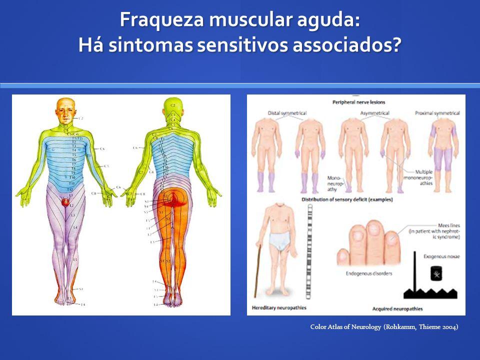 Fraqueza muscular aguda: Há sintomas sensitivos associados? Color Atlas of Neurology (Rohkamm, Thieme 2004)