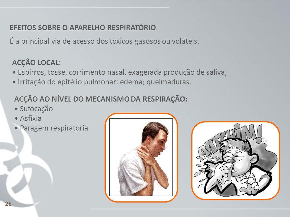 EFEITOS SOBRE O APARELHO RESPIRATÓRIO É a principal via de acesso dos tóxicos gasosos ou voláteis. ACÇÃO LOCAL: Espirros, tosse, corrimento nasal, exa