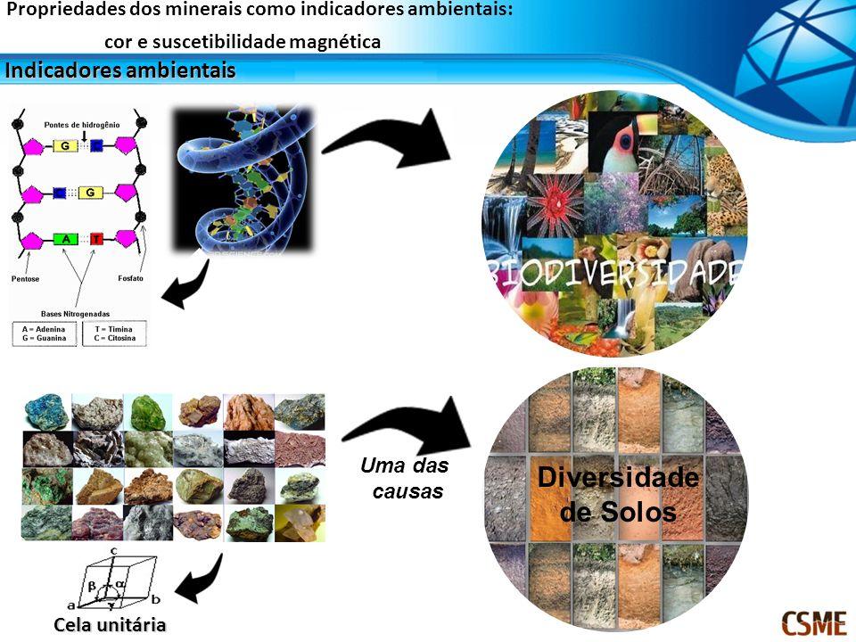 Indicadores ambientais Propriedades do minerais Cor Suscetibilidade magnética Métodos de análise Espectroscopia de reflectância difusa (cor) Suscetibilidade magnética Importância agrícola Propriedades dos minerais como indicadores ambientais: cor e suscetibilidade magnética