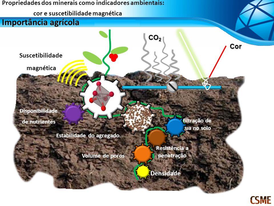 Estabilidade do agregado Volume de poros Densidade Infiltração de Água no solo Resistência a penetração Disponibilidade de nutrientes CO 2 Cor Susceti