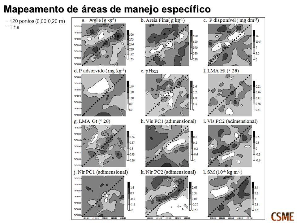 ~ 120 pontos (0,00-0,20 m) ~ 1 ha Mapeamento de áreas de manejo específico