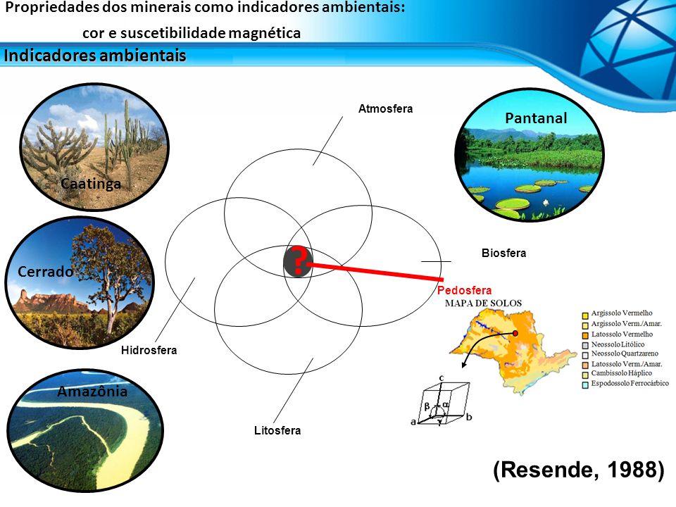 1 – 10 % > 40 % Níveis de concentração dos minerais de oxidos de ferro e alumínio Propriedades dos minerais como indicadores ambientais: cor e suscetibilidade magnética Indicadores ambientais