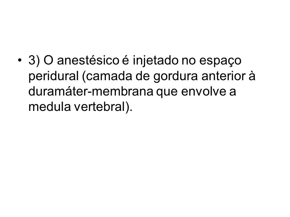 3) O anestésico é injetado no espaço peridural (camada de gordura anterior à duramáter-membrana que envolve a medula vertebral).