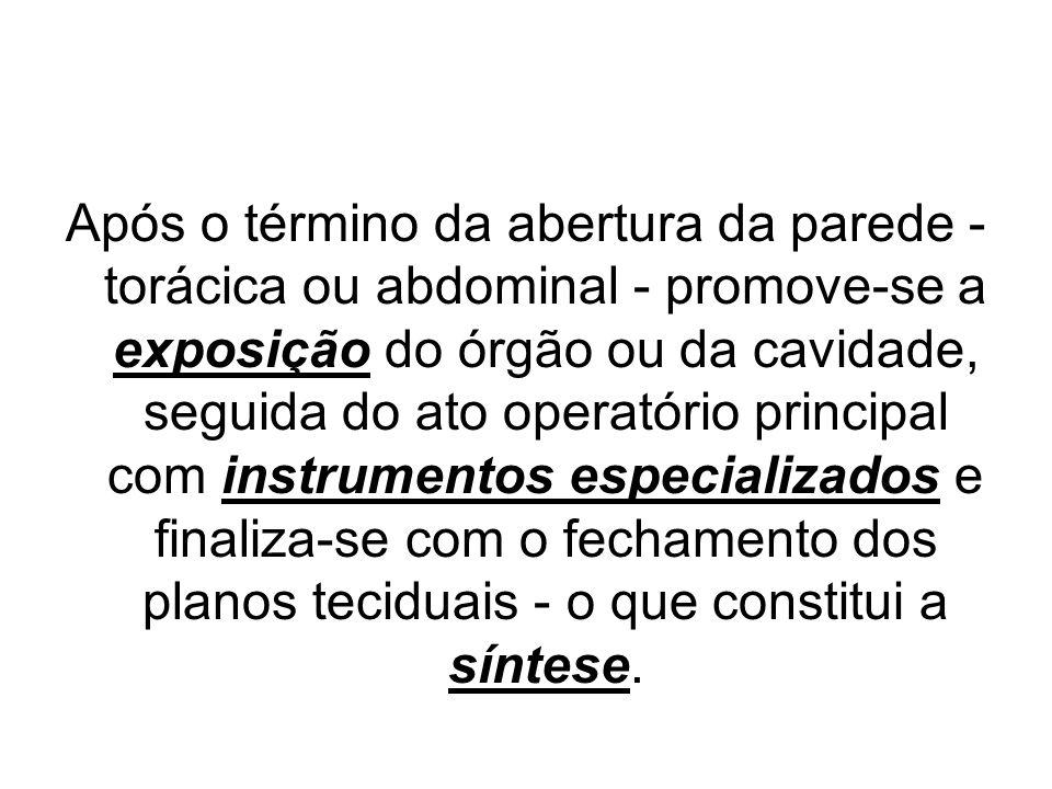 Após o término da abertura da parede - torácica ou abdominal - promove-se a exposição do órgão ou da cavidade, seguida do ato operatório principal com instrumentos especializados e finaliza-se com o fechamento dos planos teciduais - o que constitui a síntese.