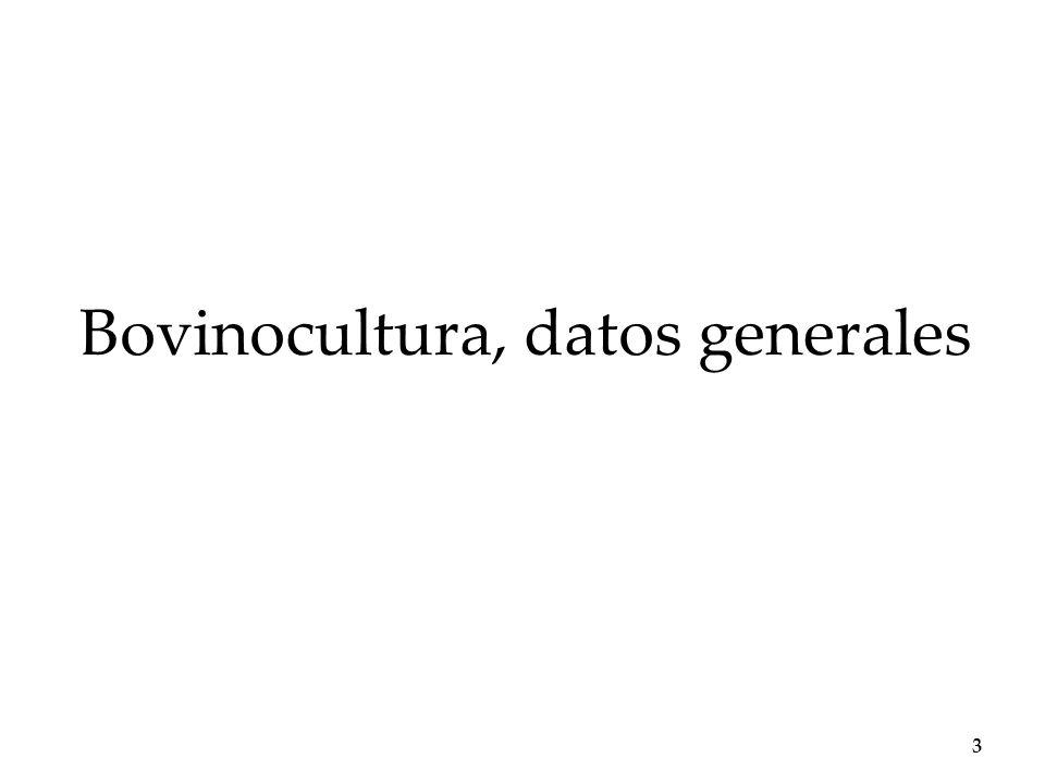 Bovinocultura, datos generales 3