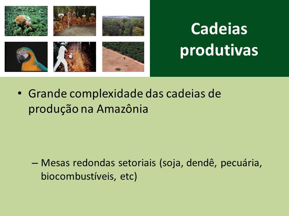 Cadeias produtivas Grande complexidade das cadeias de produção na Amazônia – Mesas redondas setoriais (soja, dendê, pecuária, biocombustíveis, etc)