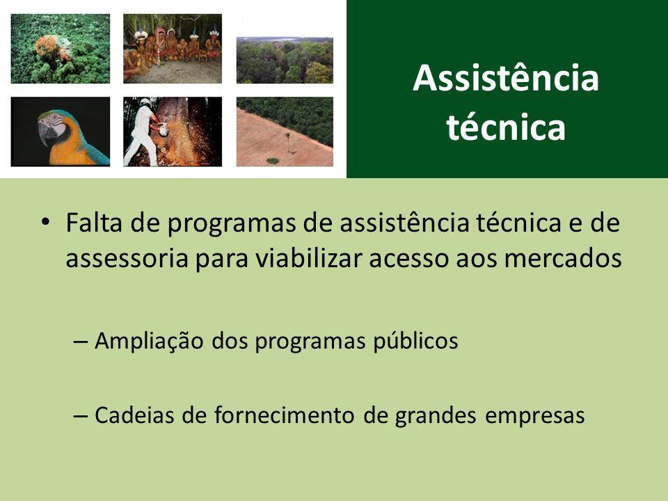 Assistência técnica Falta de programas de assistência técnica e de assessoria para viabilizar acesso aos mercados – Ampliação dos programas públicos – Cadeias de fornecimento de grandes empresas