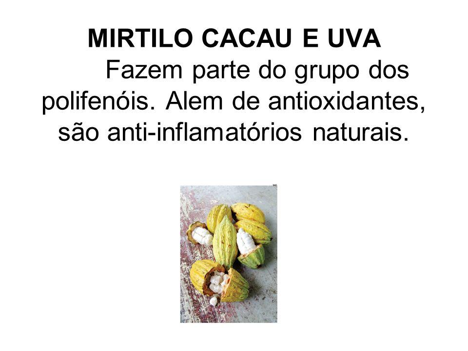 MIRTILO CACAU E UVA Fazem parte do grupo dos polifenóis. Alem de antioxidantes, são anti-inflamatórios naturais.