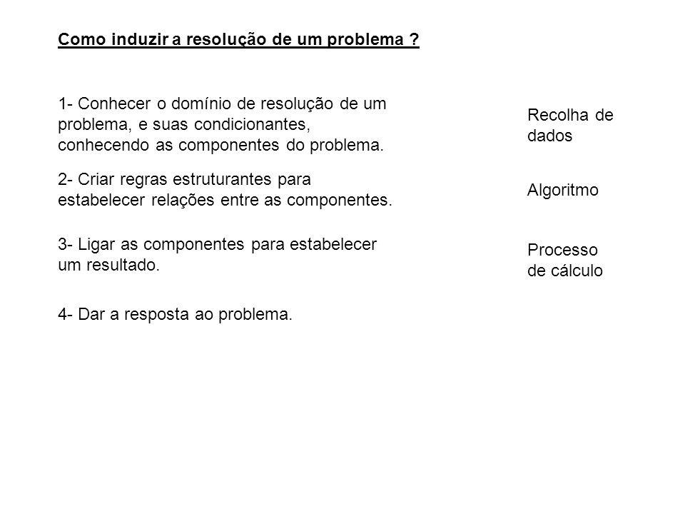 Como induzir a resolução de um problema ? 1- Conhecer o domínio de resolução de um problema, e suas condicionantes, conhecendo as componentes do probl