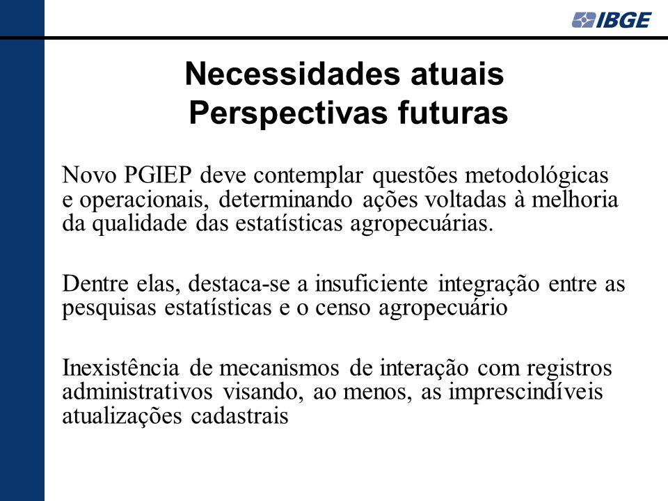 Necessidades atuais Perspectivas futuras Novo PGIEP deve contemplar questões metodológicas e operacionais, determinando ações voltadas à melhoria da qualidade das estatísticas agropecuárias.