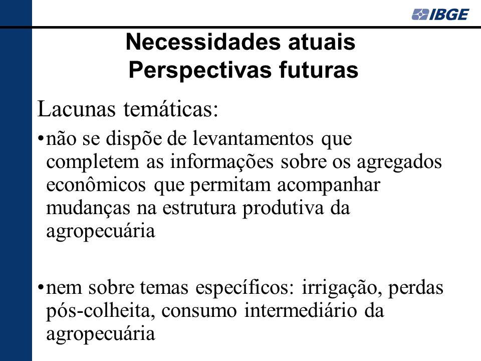 Necessidades atuais Perspectivas futuras Lacunas temáticas: não se dispõe de levantamentos que completem as informações sobre os agregados econômicos