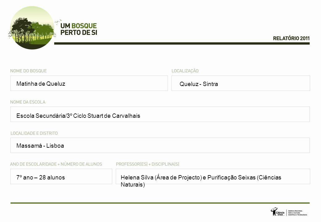 Queluz - Sintra Escola Secundária/3º Ciclo Stuart de Carvalhais Massamá - Lisboa Helena Silva (Área de Projecto) e Purificação Seixas (Ciências Naturais) Matinha de Queluz 7º ano – 28 alunos