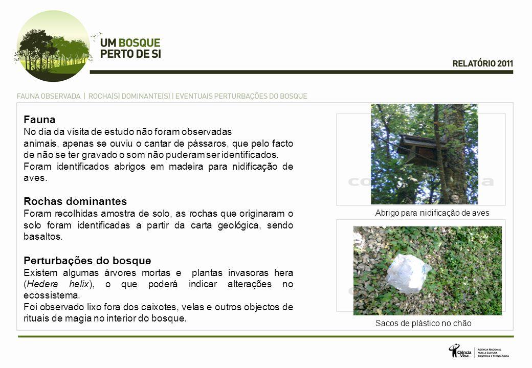 No Ano Internacional das Florestas ao integrar este projecto os principais objectivos foram: Levar alunos a conhecerem a biodiversidade de um ecossistema de floresta tipo Mediterrânica perto da sua escola - Bosque da Matinha de Queluz; Sensibilizar para os problemas ambientais e da preservação das florestas.