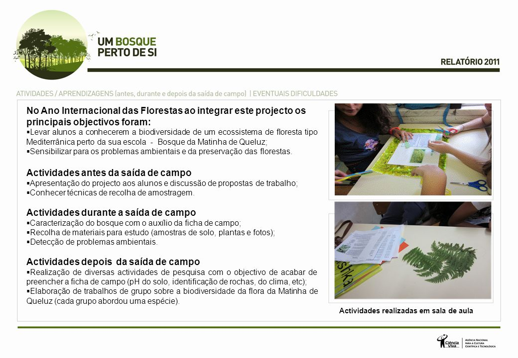 No Ano Internacional das Florestas ao integrar este projecto os principais objectivos foram: Levar alunos a conhecerem a biodiversidade de um ecossist