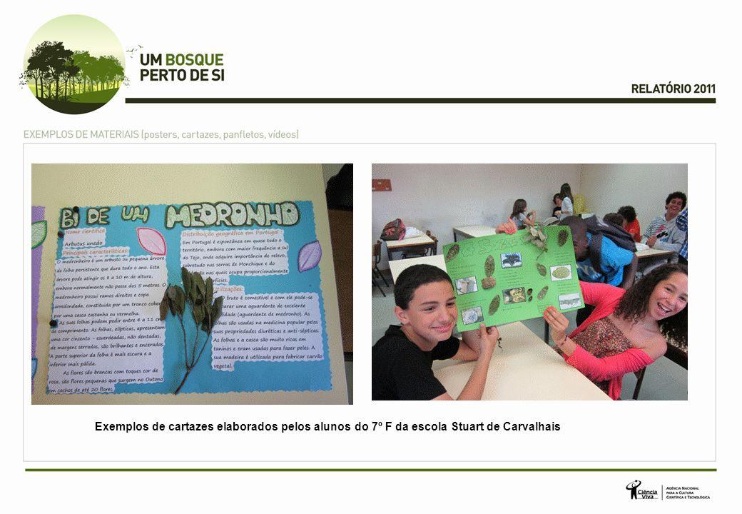 Exemplos de cartazes elaborados pelos alunos do 7º F da escola Stuart de Carvalhais