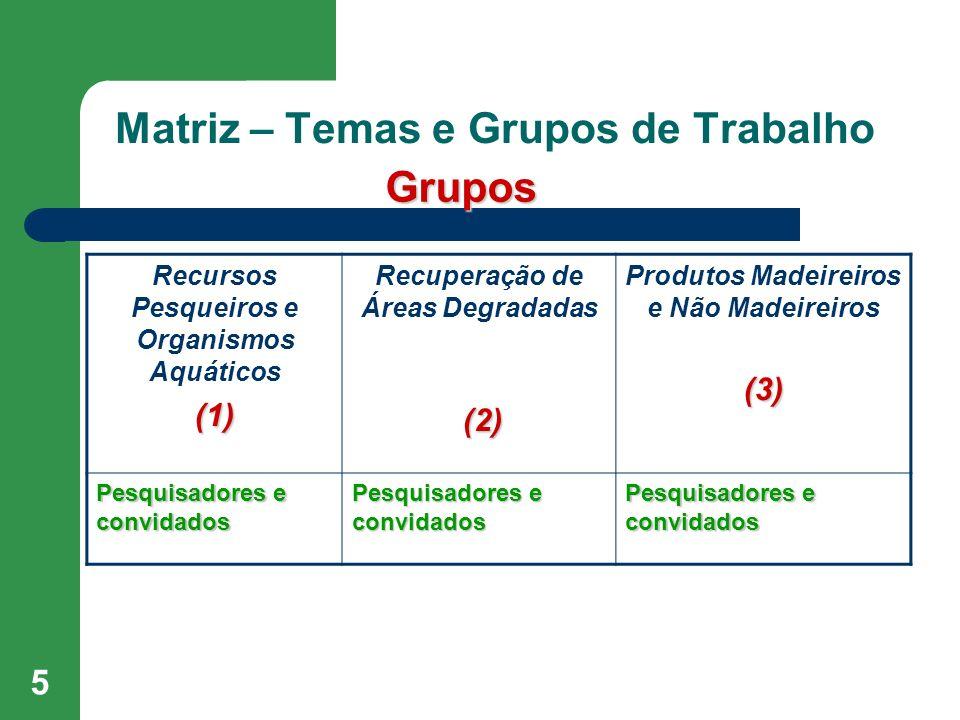 5 Matriz – Temas e Grupos de Trabalho Recursos Pesqueiros e Organismos Aquáticos(1) Recuperação de Áreas Degradadas (2) Produtos Madeireiros e Não Mad