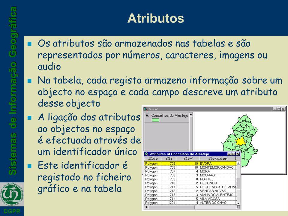 Sistemas de Informação Geográfica DGPR Atributos n Os atributos são armazenados nas tabelas e são representados por números, caracteres, imagens ou au