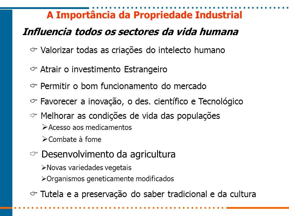 A Importância da Propriedade Industrial Atrair o investimento Estrangeiro Permitir o bom funcionamento do mercado Favorecer a inovação, o des. científ