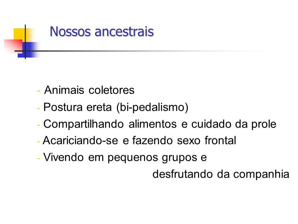 Nossos ancestrais Nossos ancestrais - Animais coletores - Postura ereta (bi-pedalismo) - Compartilhando alimentos e cuidado da prole - Acariciando-se