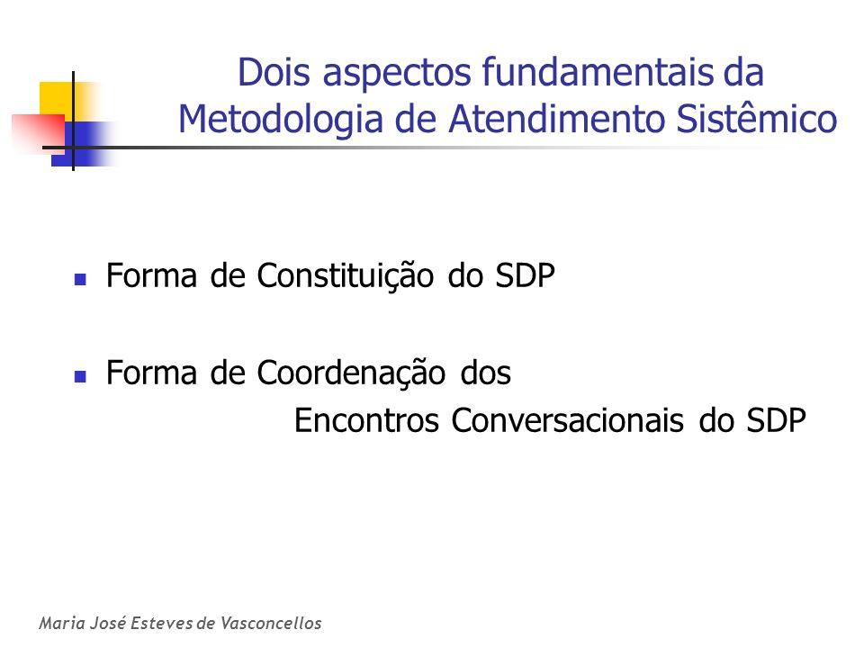 Maria José Esteves de Vasconcellos Dois aspectos fundamentais da Metodologia de Atendimento Sistêmico Forma de Constituição do SDP Forma de Coordenaçã