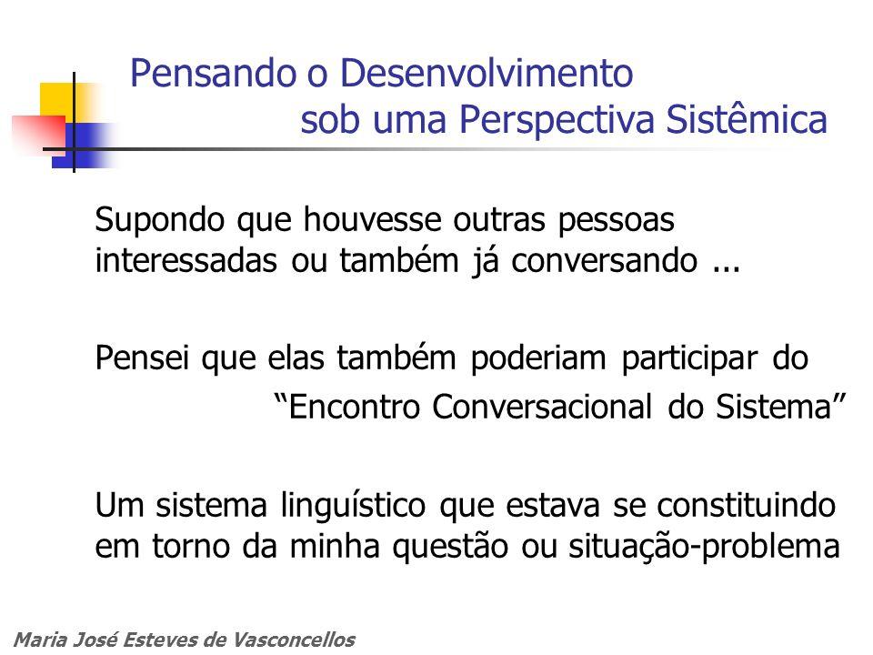 Maria José Esteves de Vasconcellos Pensando o Desenvolvimento sob uma Perspectiva Sistêmica Supondo que houvesse outras pessoas interessadas ou também
