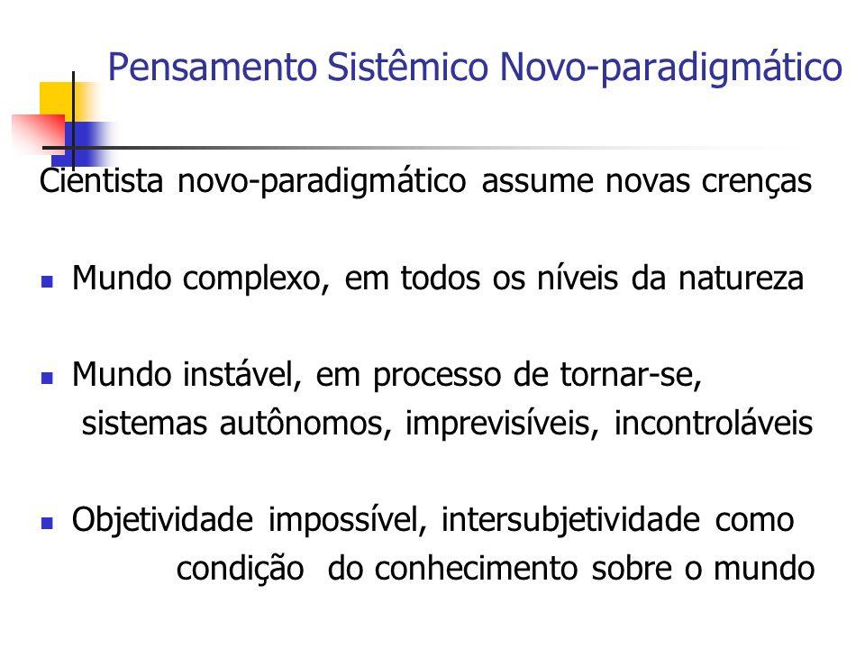 Pensamento Sistêmico Novo-paradigmático Cientista novo-paradigmático assume novas crenças Mundo complexo, em todos os níveis da natureza Mundo instáve