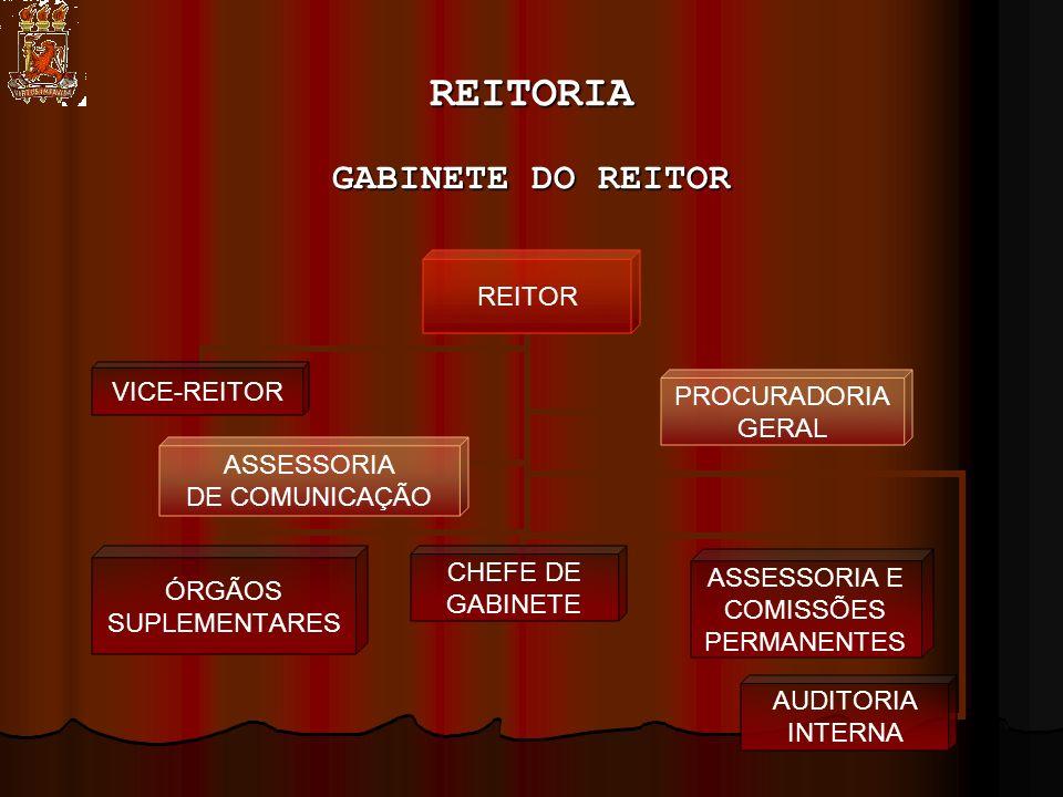 REITORIA GABINETE DO REITOR REITOR CHEFE DE GABINETE ASSESSORIA E COMISSÕES PERMANENTES VICE-REITOR ÓRGÃOS SUPLEMENTARES AUDITORIA INTERNA PROCURADORIA GERAL ASSESSORIA DE COMUNICAÇÃO