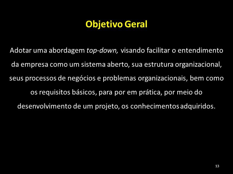 13 Objetivo Geral Adotar uma abordagem top-down, visando facilitar o entendimento da empresa como um sistema aberto, sua estrutura organizacional, seu