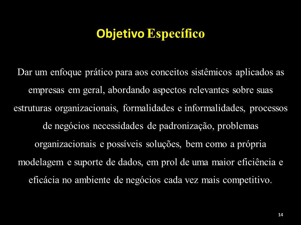 14 Objetivo Específico Dar um enfoque prático para aos conceitos sistêmicos aplicados as empresas em geral, abordando aspectos relevantes sobre suas e
