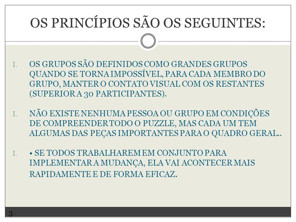 OS PRINCÍPIOS SÃO OS SEGUINTES: I.