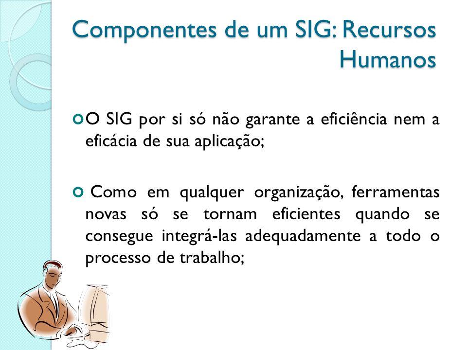 Componentes de um SIG: Recursos Humanos O SIG por si só não garante a eficiência nem a eficácia de sua aplicação; Como em qualquer organização, ferramentas novas só se tornam eficientes quando se consegue integrá-las adequadamente a todo o processo de trabalho;