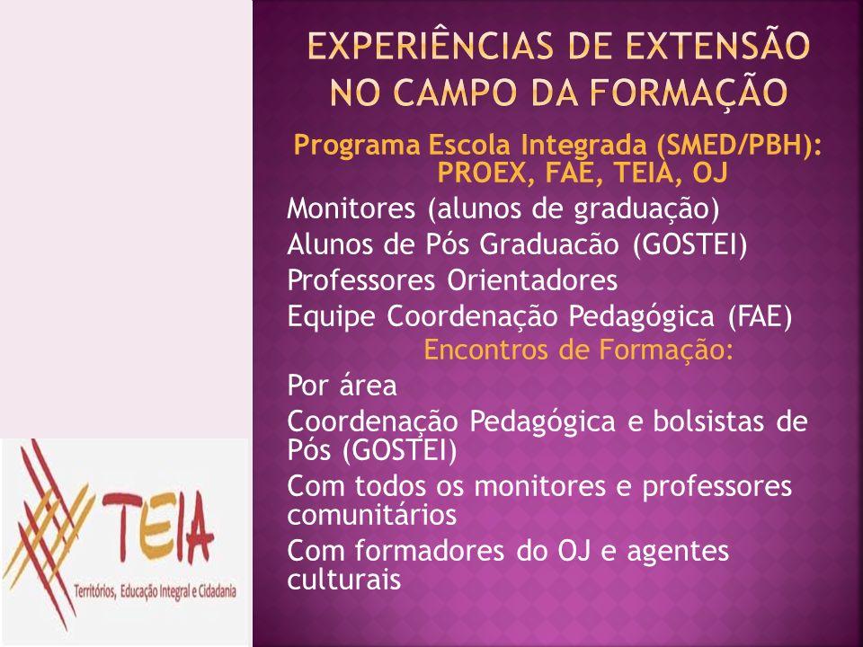Programa Escola Integrada (SMED/PBH): PROEX, FAE, TEIA, OJ Monitores (alunos de graduação) Alunos de Pós Graduacão (GOSTEI) Professores Orientadores E