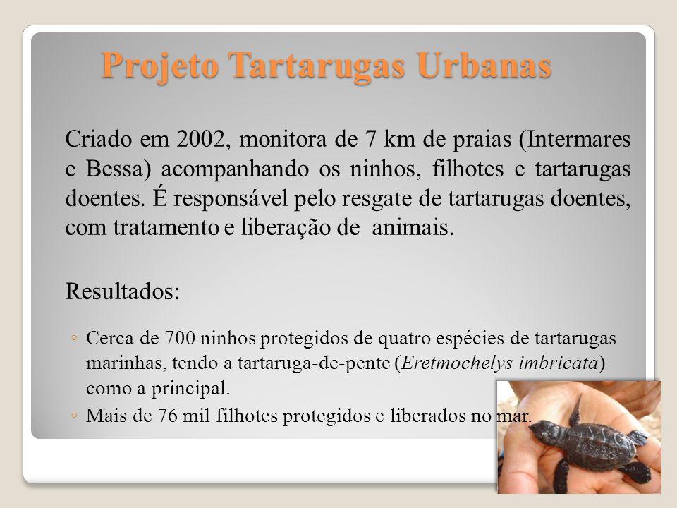 Projeto Tartarugas Urbanas Projeto Tartarugas Urbanas Criado em 2002, monitora de 7 km de praias (Intermares e Bessa) acompanhando os ninhos, filhotes