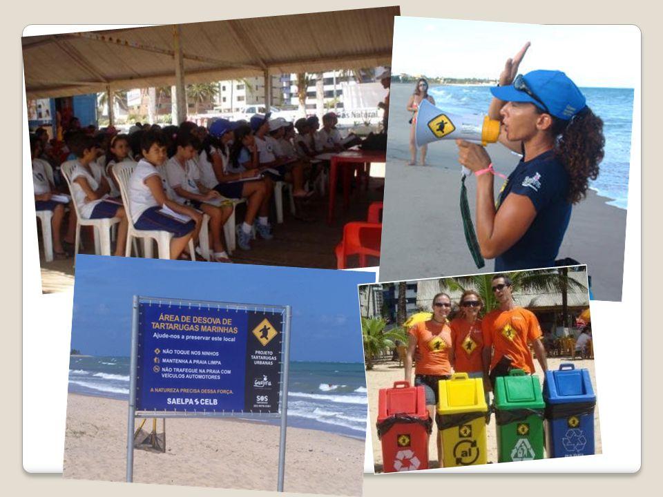Projeto Tartarugas Urbanas Projeto Tartarugas Urbanas Criado em 2002, monitora de 7 km de praias (Intermares e Bessa) acompanhando os ninhos, filhotes e tartarugas doentes.