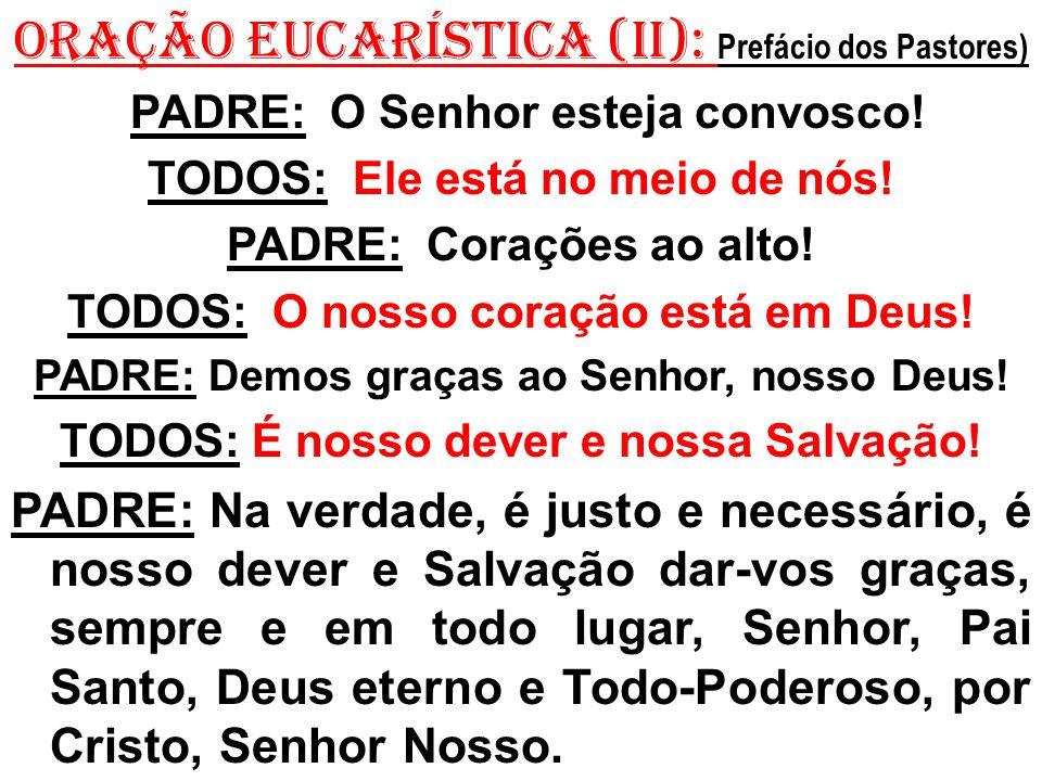 ORAÇÃO EUCARÍSTICA (II): Prefácio dos Pastores) PADRE: O Senhor esteja convosco.