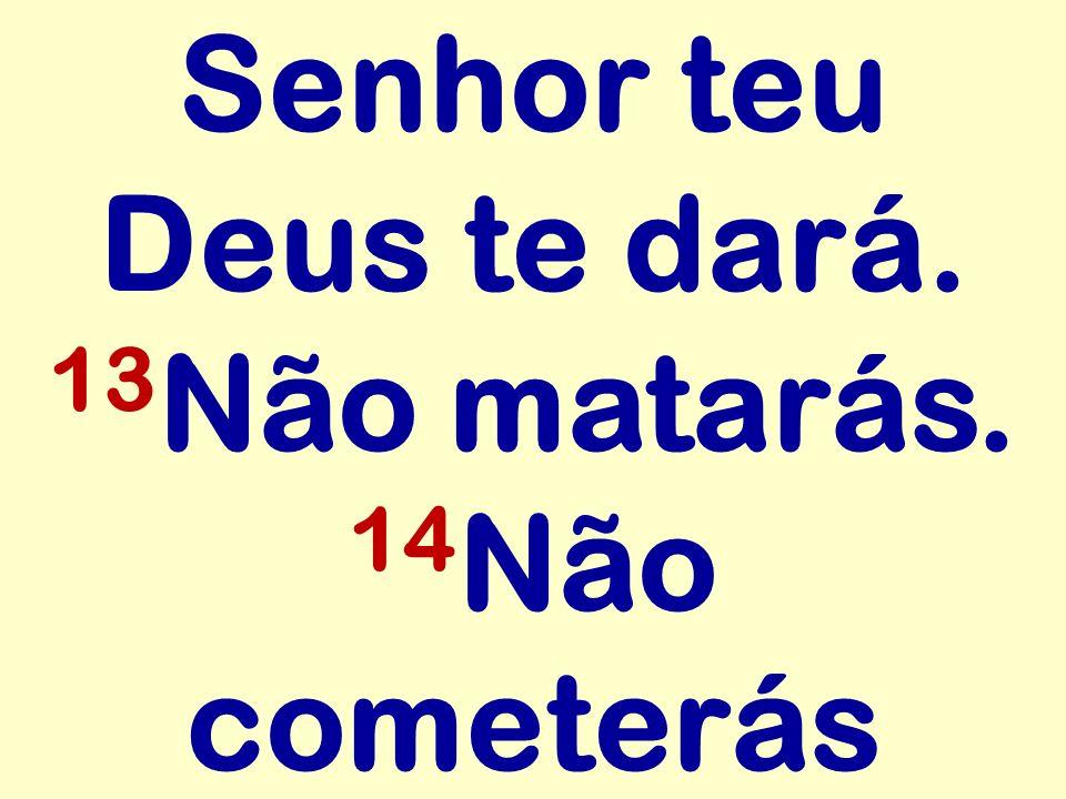 Senhor teu Deus te dará. 13 Não matarás. 14 Não cometerás