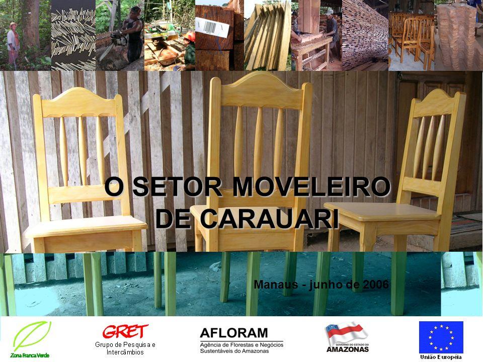 O SETOR MOVELEIRO DE CARAUARI Manaus - junho de 2006