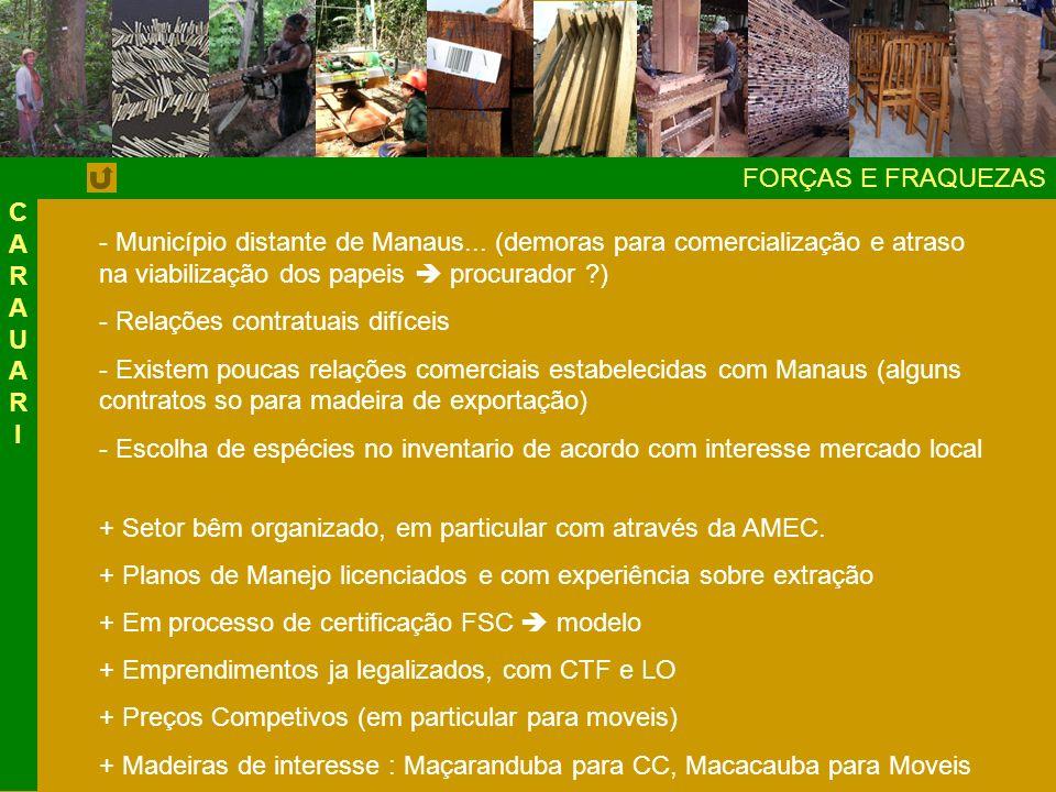 FORÇAS E FRAQUEZAS - Município distante de Manaus...