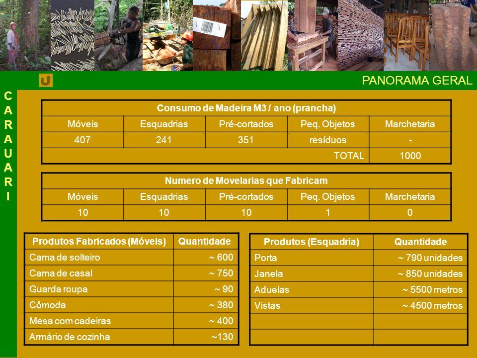 PANORAMA GERAL Consumo de Madeira M3 / ano (prancha) MóveisEsquadriasPré-cortadosPeq.