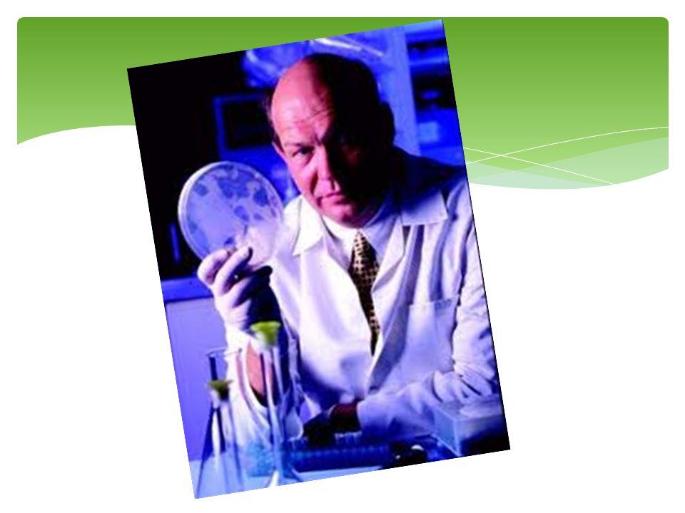 Cientista é uma pessoa que pensa melhor que as outras…(ALVES, 2000).