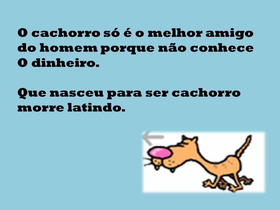 O cachorro só é o melhor amigo do homem porque não conhece O dinheiro.