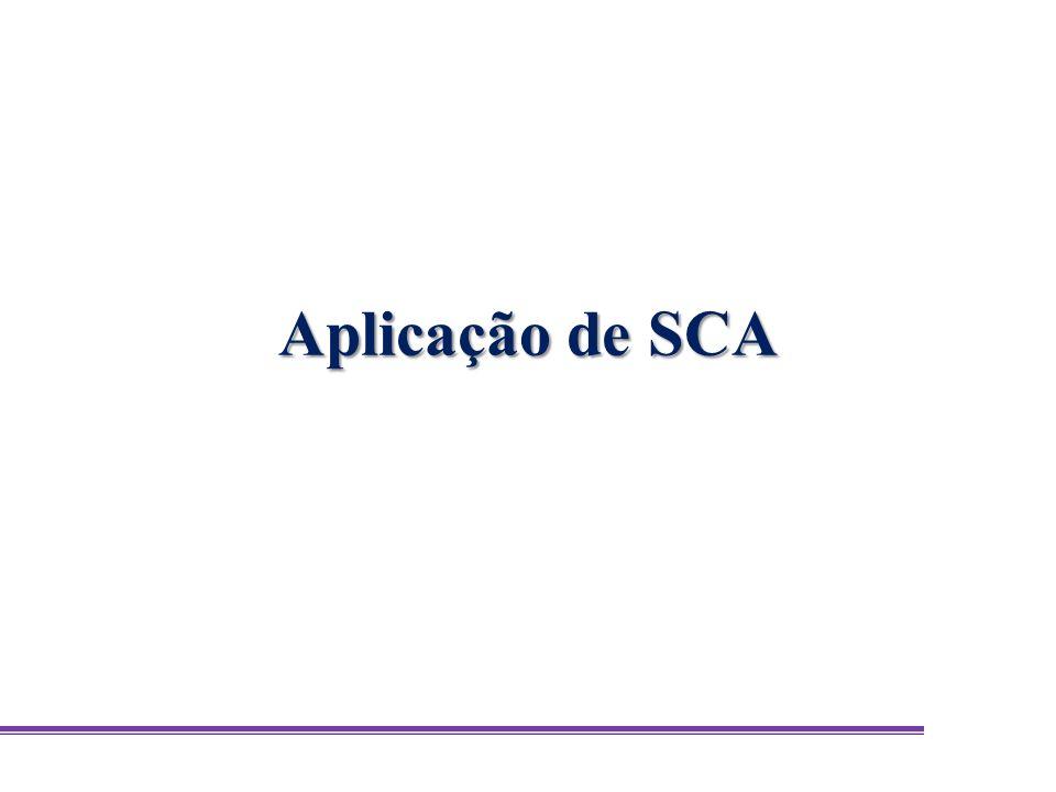 Aplicação de SCA
