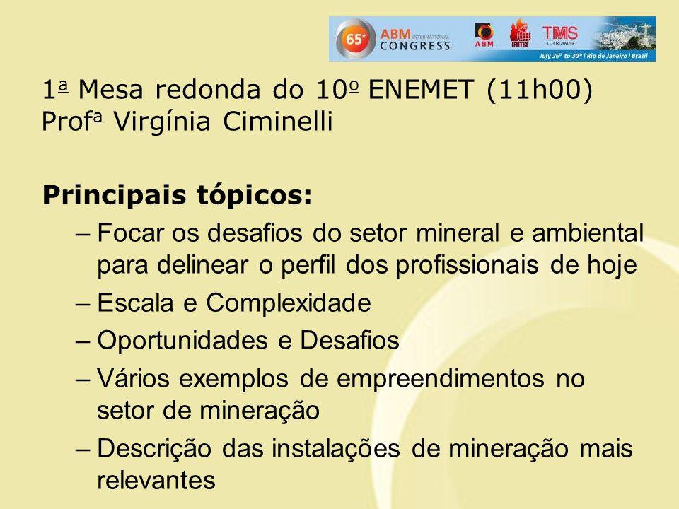 Principais tópicos: –Focar os desafios do setor mineral e ambiental para delinear o perfil dos profissionais de hoje –Escala e Complexidade –Oportunid